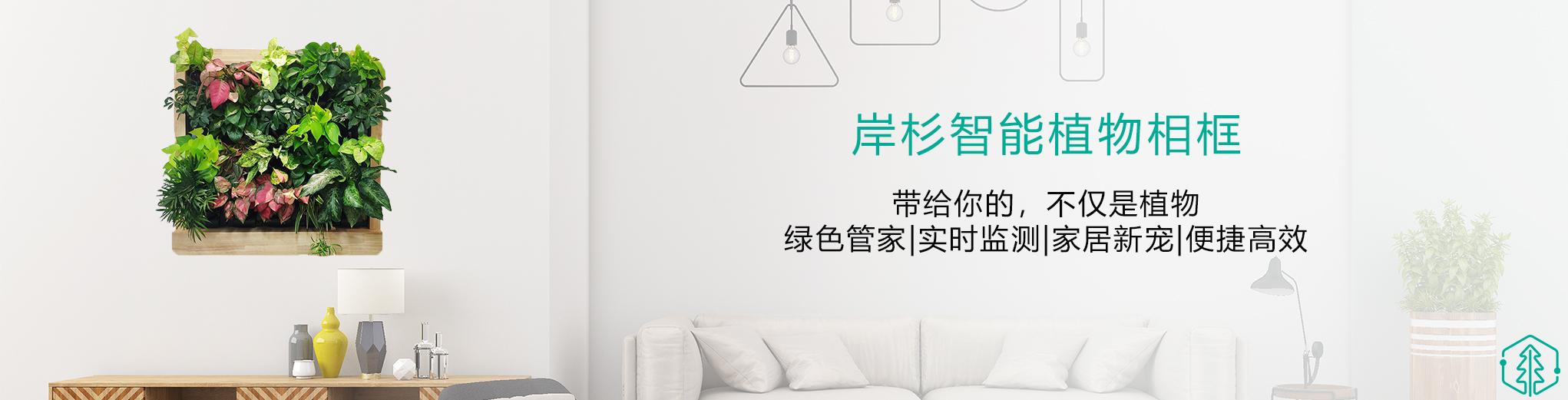 【顾家猫·岸杉科技】2021.01.19~2021.03.19(5/60)